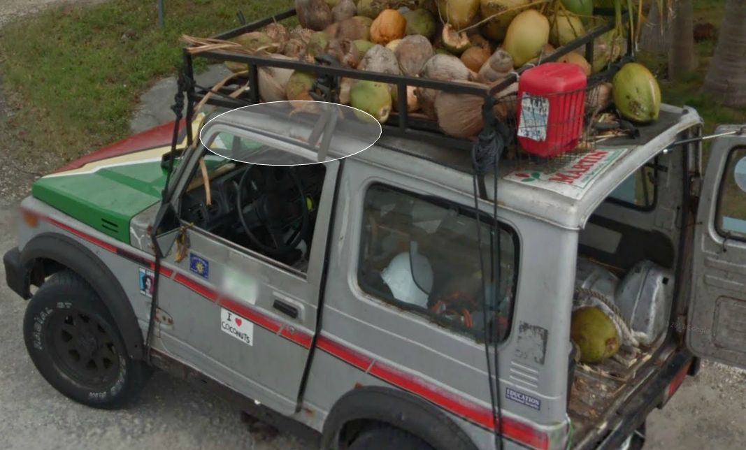 this-guy-sure-loves-his-coconuts--