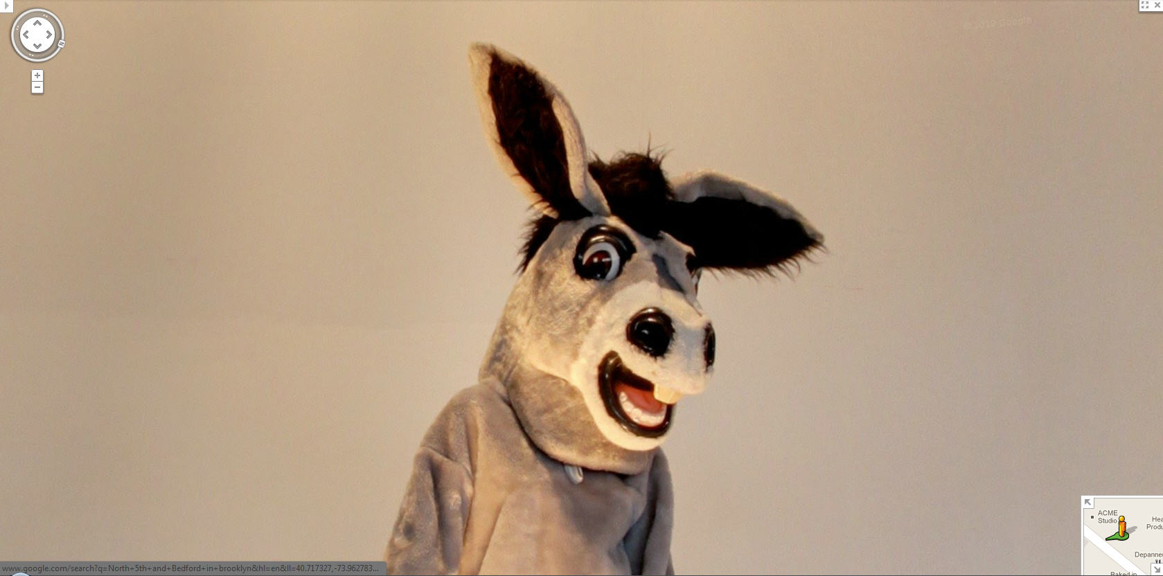 google-street-view-captures-a-donkey-posing-for-the-camera