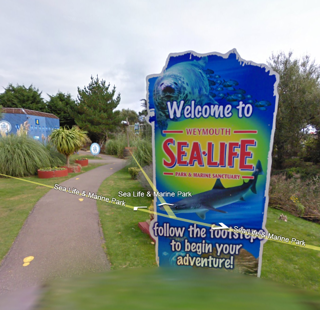 sea-life-in-weymouth-uk-co-google-maps-street-view