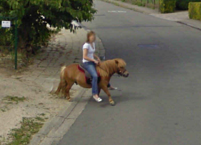 either-this-belgium-woman-has-long-legs-or-that-horse-has-short-legs