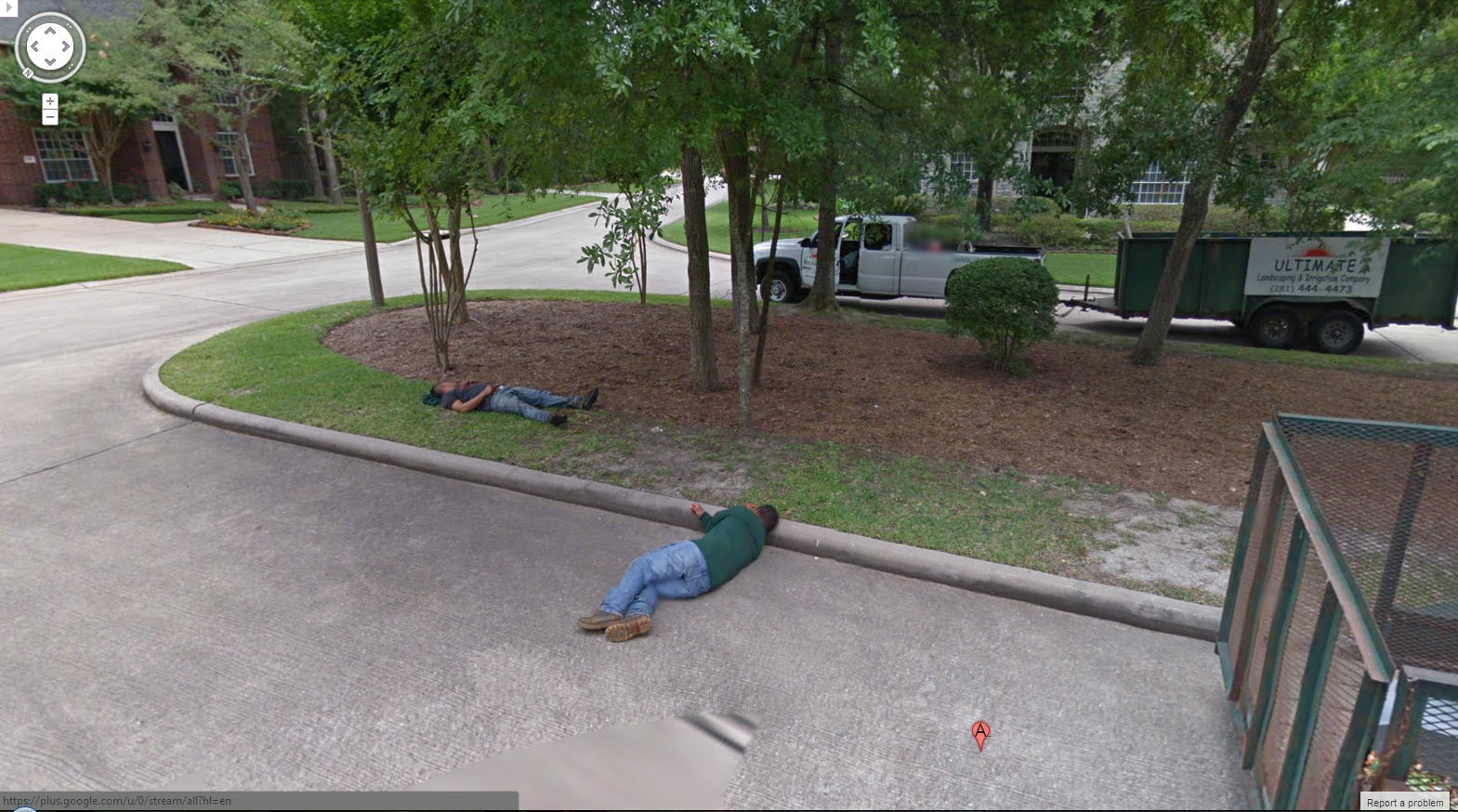 Great Advertising for Siesta Landscapers