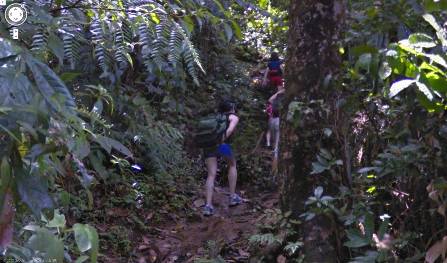 Google Jungle View Martinique Now Available