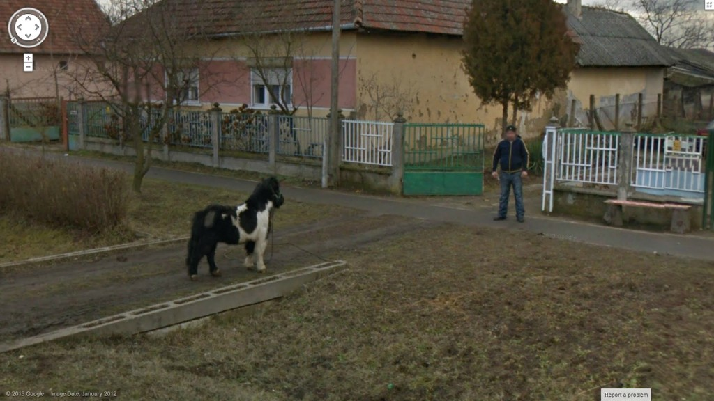 google-street-view-man-vs-horse1