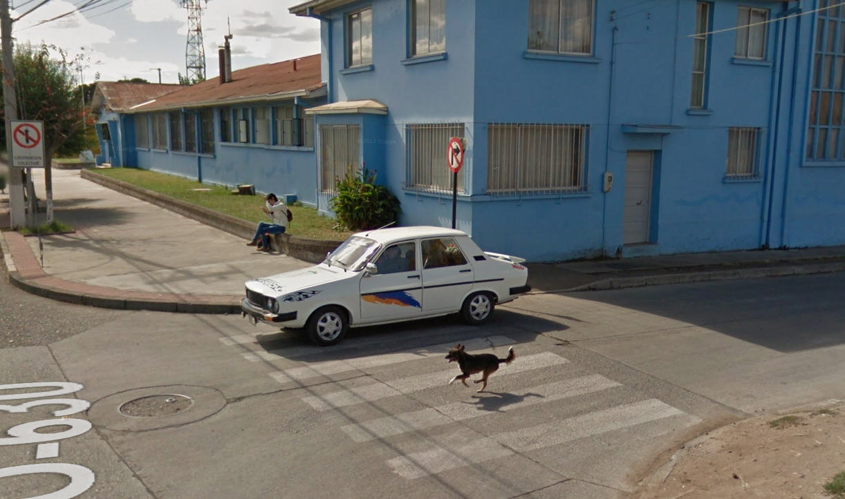 Google Street View Runs over a dog in Chile