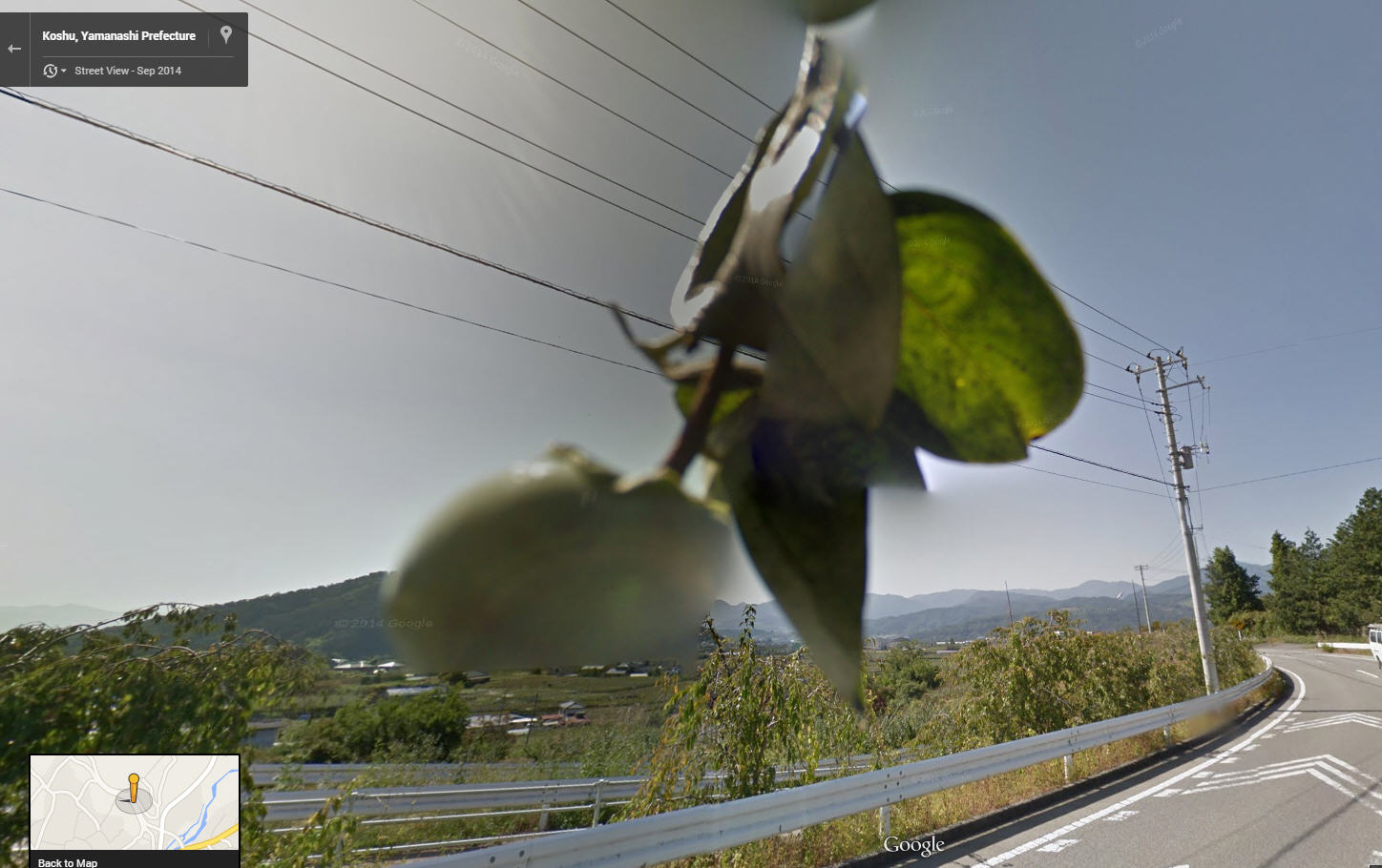 Google Street View on the App Store