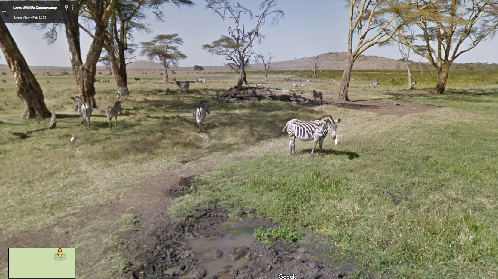 Google Street View Kenya Now Live