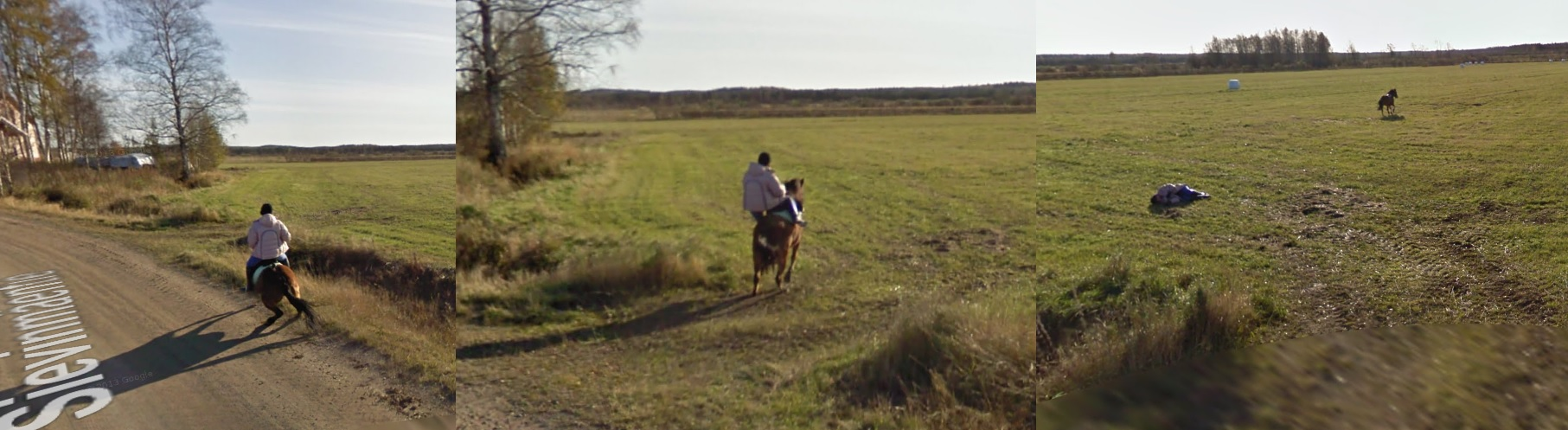 Google Street View Spooks a Horse.  Horse Bucks off Rider.