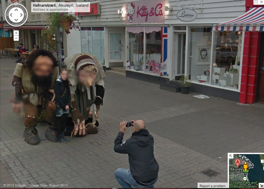 Getting a picture of the Icelandic Locals