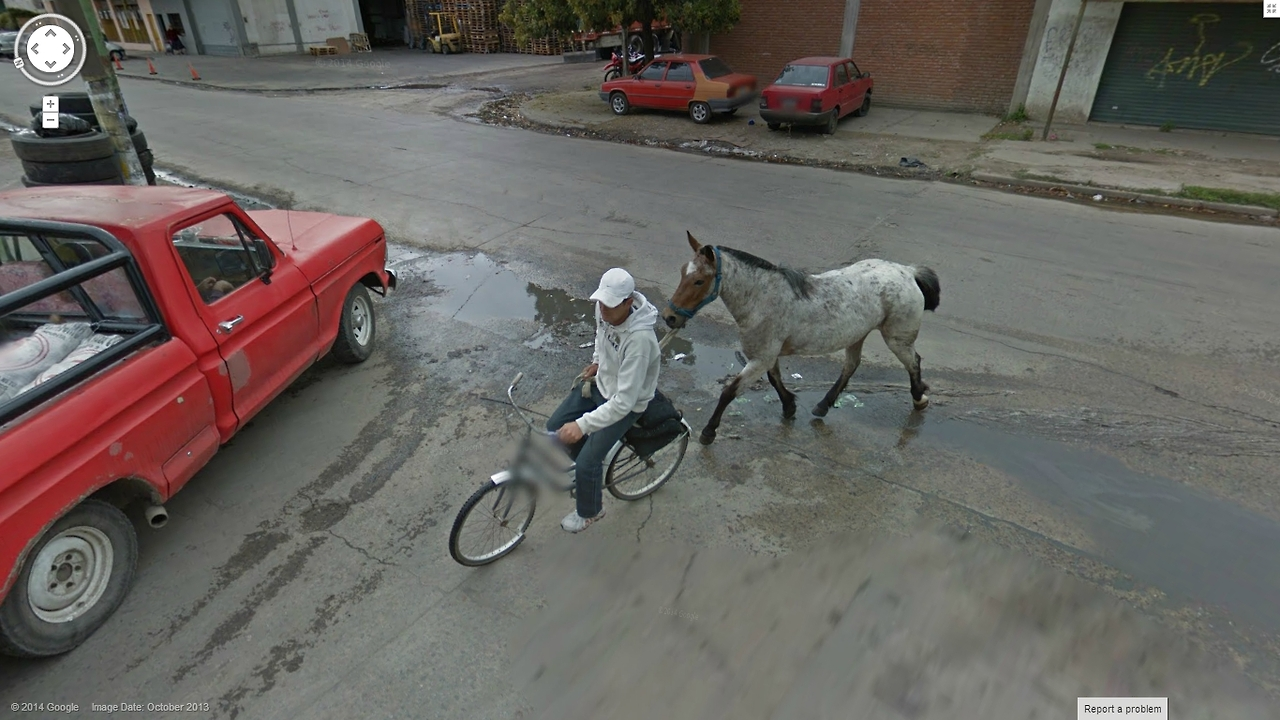 Taking my horse for a walk