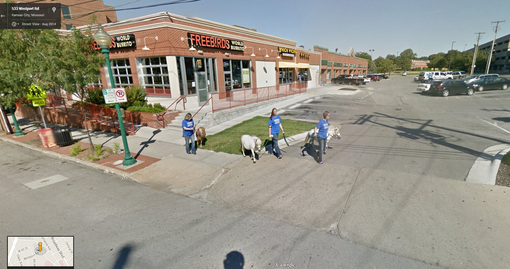 In Missouri, they take ponies for a walk.
