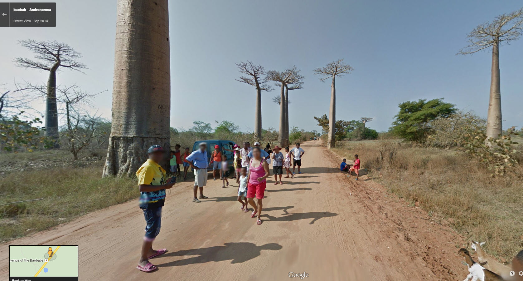 Google Street View now lets you explore the world's most unusual island: Madagascar
